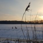 Winterpracht 2021 (17)