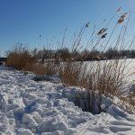 Winterpracht 2021 (26)