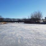 Winterpracht 2021 (32)