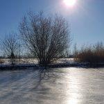 Winterpracht 2021 (34)