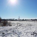 Winterpracht 2021 (37)