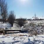 Winterpracht 2021 (38)
