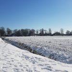 Winterpracht 2021 (4)