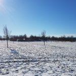 Winterpracht 2021 (40)