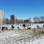 Winterpracht 2021 (41)