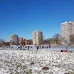 Winterpracht 2021 (47)
