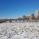 Winterpracht 2021 (52)