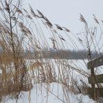 Winterpracht 2021 (61)