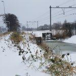 Winterpracht 2021 (65)