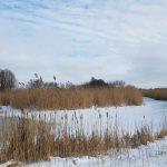 Winterpracht 2021 (67)